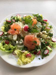 salade van verse oogst